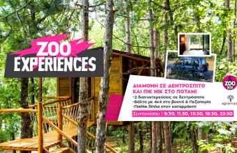 Zoo Experiences: Ένα 3ήμερο στο δεντρόσπιτο και Πικ νικ δίπλα στον καταρράκτη!