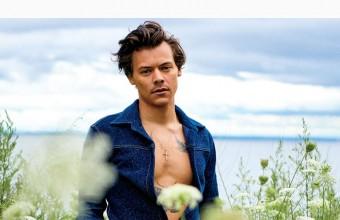 Η Olivia Wilde επαινεί τον Harry Styles για την «ταπεινότητα» και τη «χάρη» του!